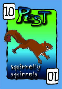 squirrelly squirrels